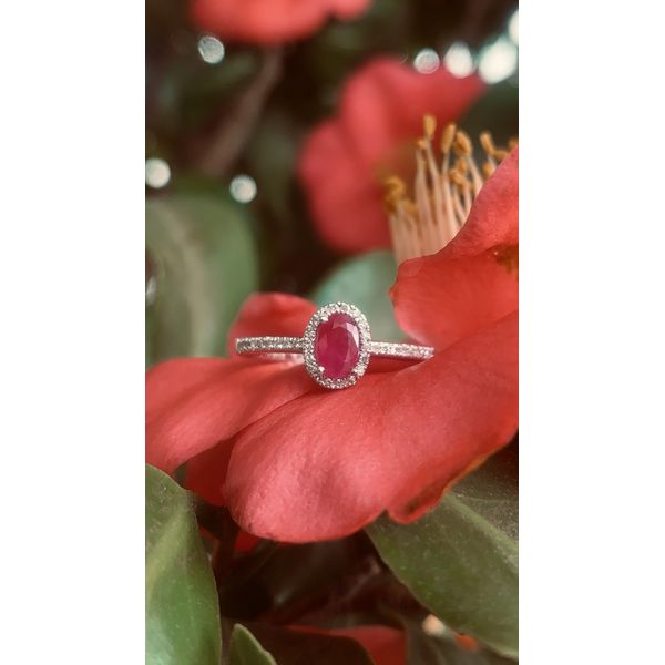 Oval Ruby Halo Ring Image 3 Armentor Jewelers New Iberia, LA