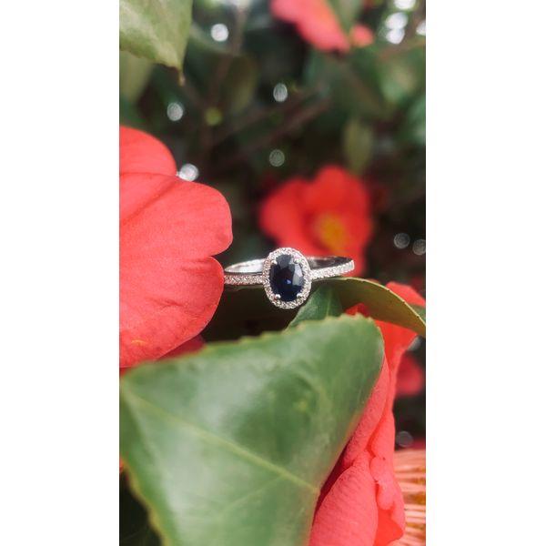 Oval Halo Sapphire Ring Image 2 Armentor Jewelers New Iberia, LA