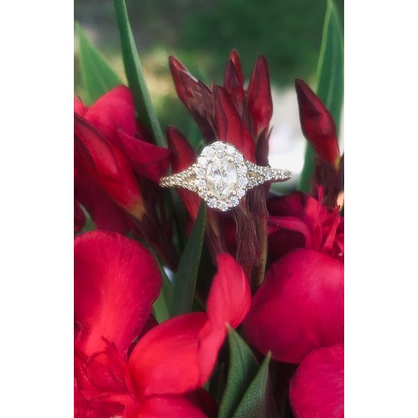 Oval Shape Diamond Halo Engagement Ring Armentor Jewelers New Iberia, LA