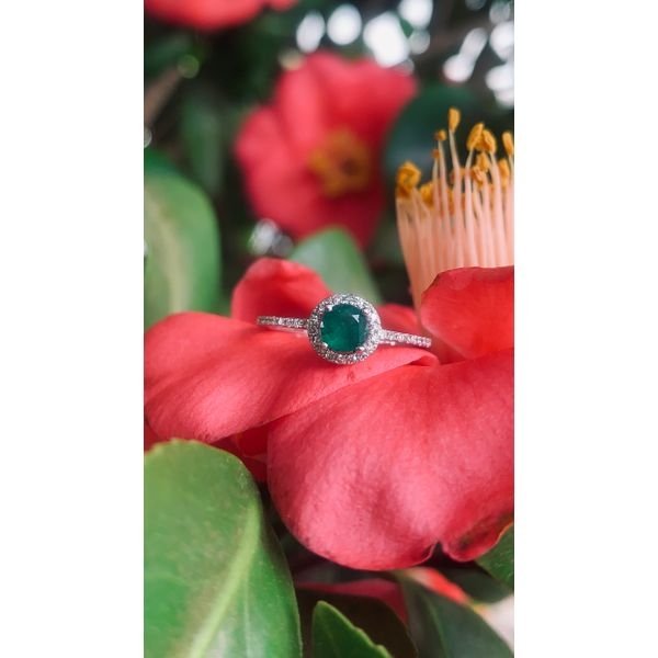 Round Emerald Halo Ring Image 3 Armentor Jewelers New Iberia, LA