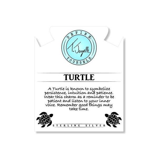 Turtle Info Card