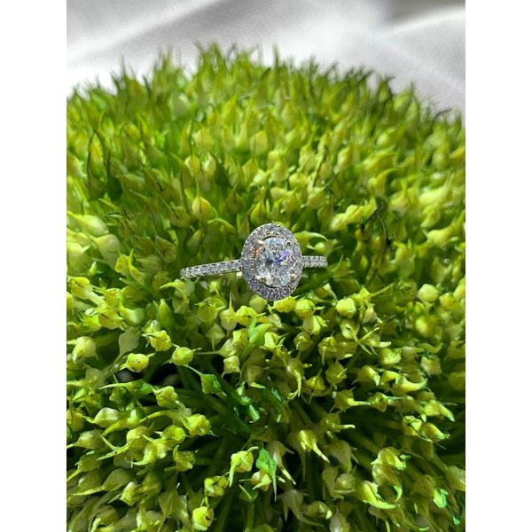 OVAL DIAMOND HALO RING Diamond Jewelers Gulf Shores, AL