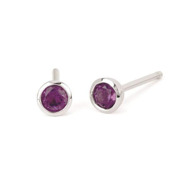 Ostbye Birthstone Earrings Diedrich Jewelers Ripon, WI