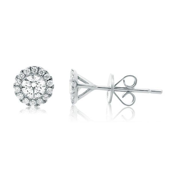 White Gold Diamond Halo Stud Earrings Mystique Jewelers Alexandria, VA