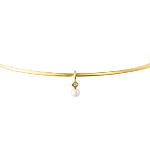 Leximazz Gold Choker  Image 2 Mystique Jewelers Alexandria, VA
