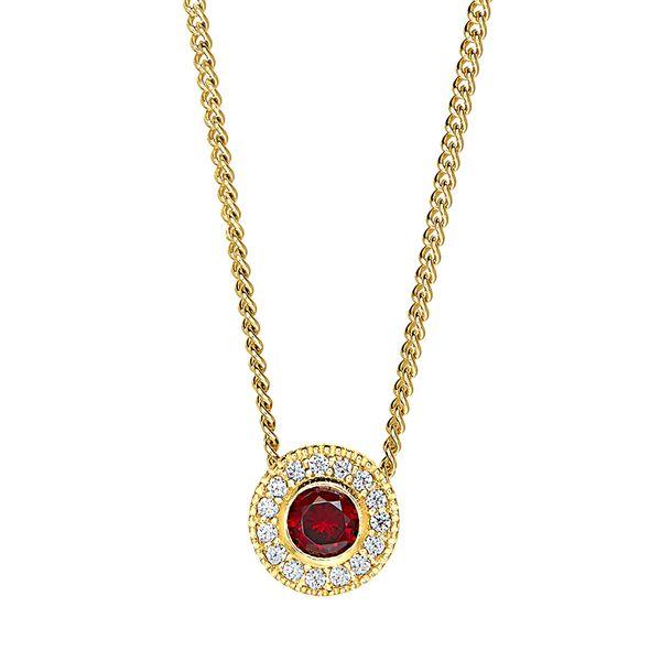 Gold Vermeil January Birthstone Necklace Parris Jewelers Hattiesburg, MS