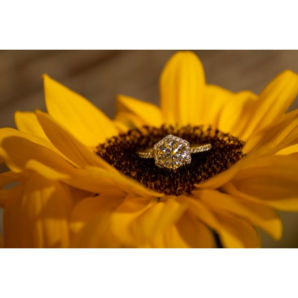 14 kt Yellow Diamond Engagement Ring Complete Image 2 Parris Jewelers Hattiesburg, MS