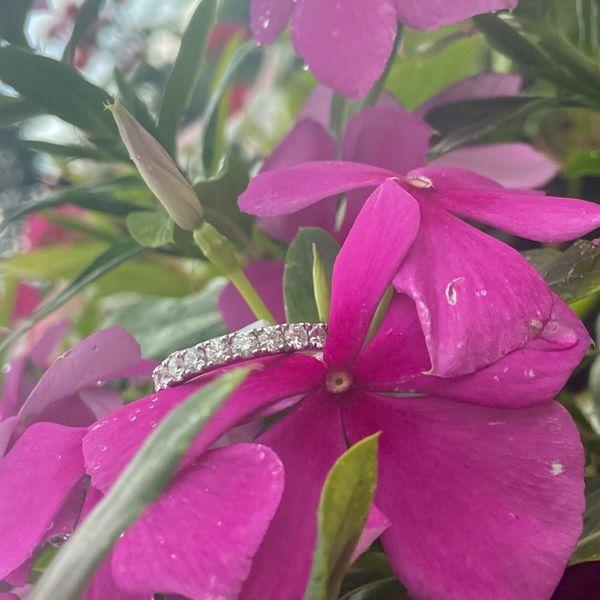 14 kt White Gold Diamond Wedding Band  Image 2 Parris Jewelers Hattiesburg, MS