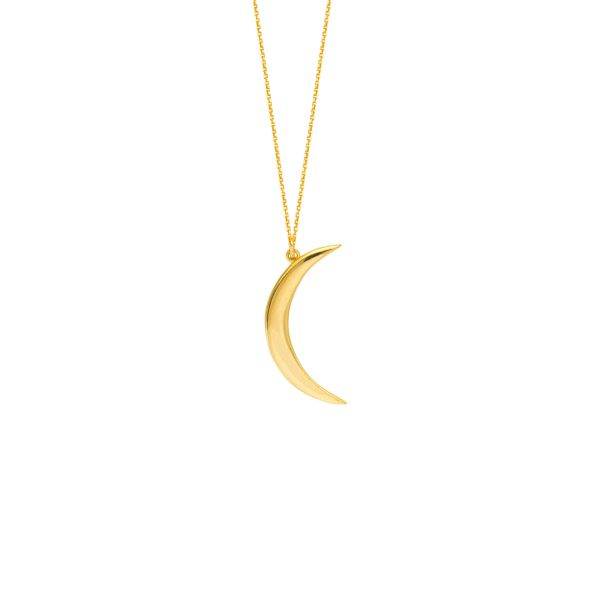 Yellow Gold Crescent Necklace Polly's Fine Jewelry N. Charleston, SC