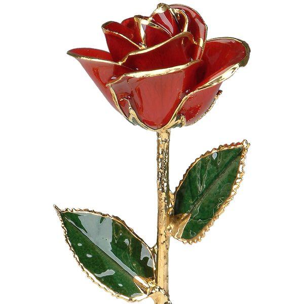 Red 24k Gold Dipped Rose Robert Irwin Jewelers Memphis, TN