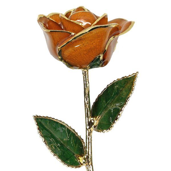 Orange 24k Gold Dipped Rose Robert Irwin Jewelers Memphis, TN