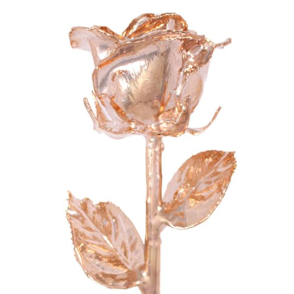 Rose Gold 24k Gold Dipped Rose Robert Irwin Jewelers Memphis, TN