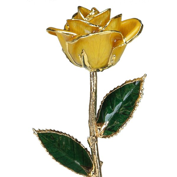 Yellow 24k Gold Dipped Rose Robert Irwin Jewelers Memphis, TN
