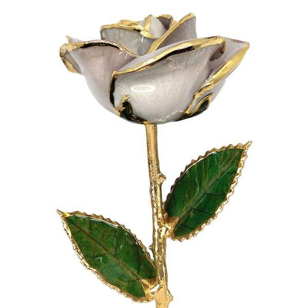Pearl White 24k Gold Dipped Rose Robert Irwin Jewelers Memphis, TN